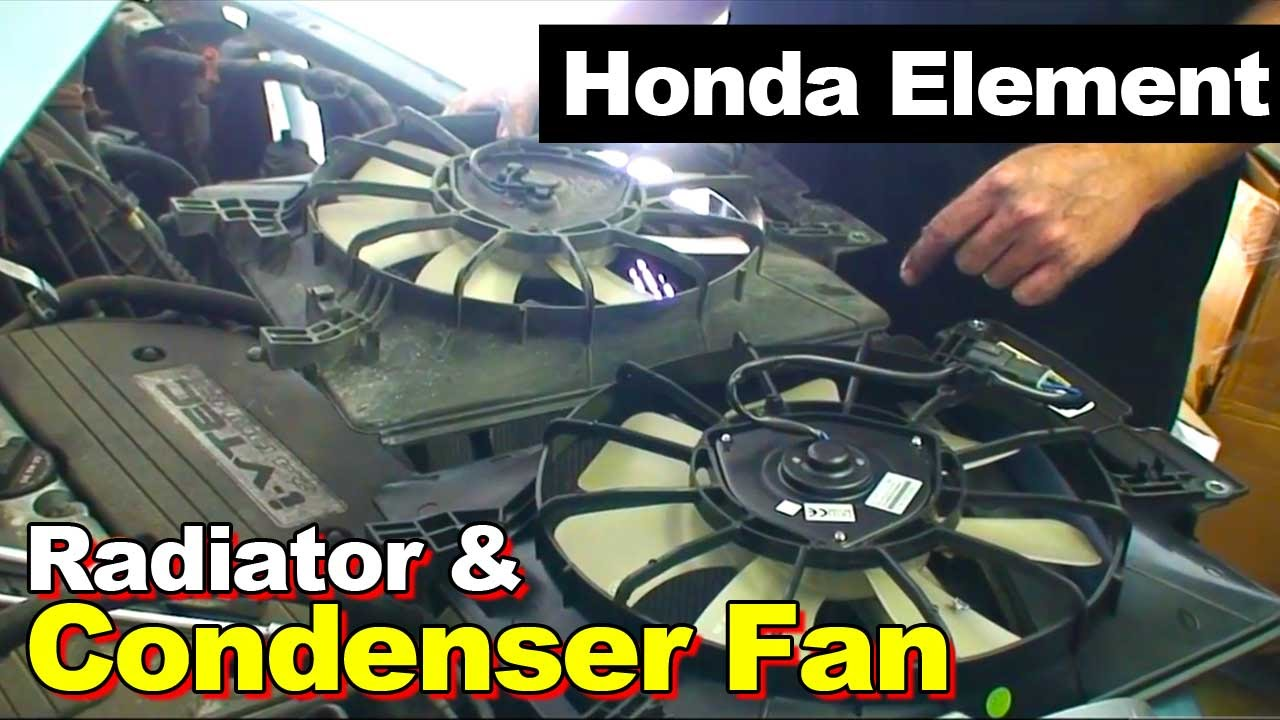 2004 honda element manual transmission replacement cost